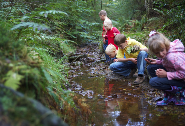 Nature Deficit Disorder: Why modern kids need old-fashioned freedoms