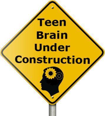 Brain Development, Teens, and Summer Camp